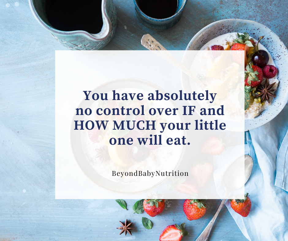 Quote from the author: You have absolutely no control over if and how much your little one will eat.