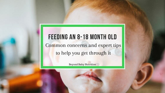 Feeding an 8-18 month old